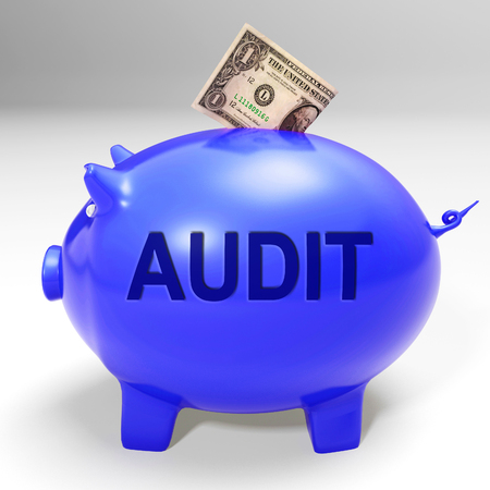 Audit Piggy Bank Meaning Auditing Inspecting And Finances Stock Photo - 26064858