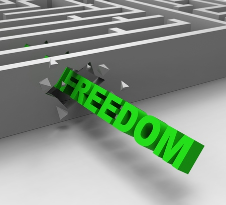 jailbreak: Freedom From Maze Shows Liberty Or Escape