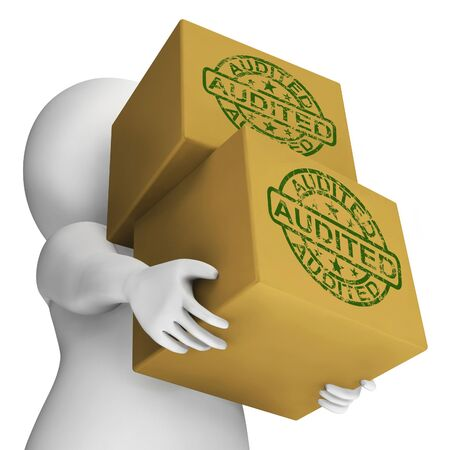 Audited Boxes Meaning Company Finances And Accounts Are Assessed Stock Photo - 26235063
