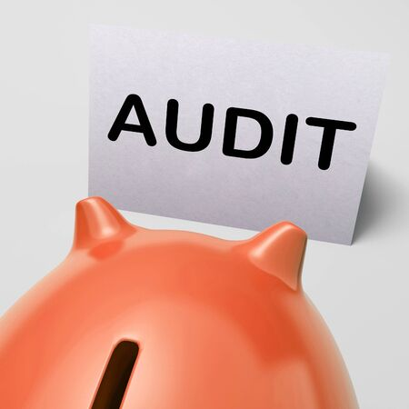 auditors: Audit Piggy Bank Showing Inspect Analyze And Verify