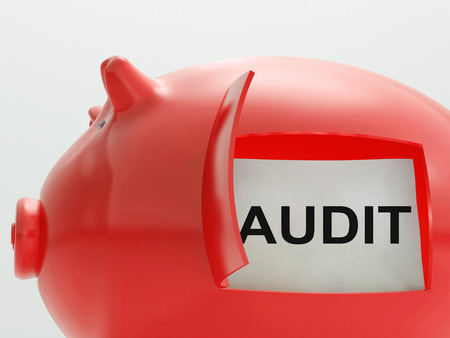 Audit Piggy Bank Meaning Inspection And Validation Stock Photo - 26235783