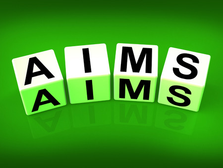Aims Blocks Meaning Purpose Targets and Goals Stock Photo