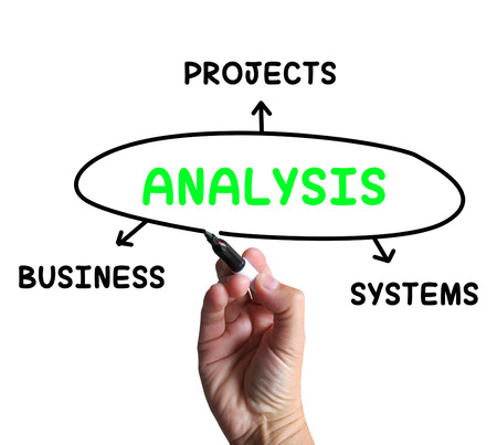 analysed: Analysis Diagram Showing Investigating Business Systems And Projects