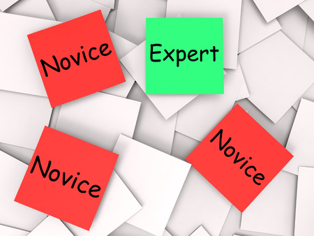 novice: Expert Novice Notes Meaning Professional Or Learner