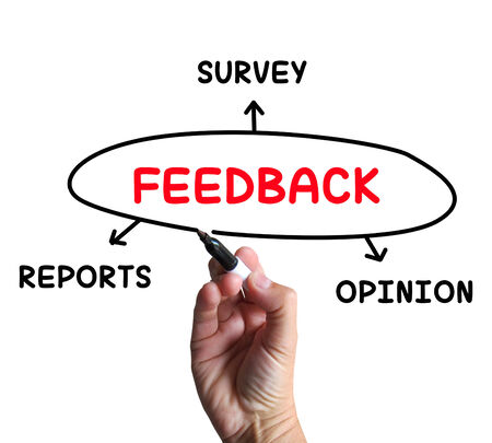 criticism: Feedback Diagram Meaning Reports Criticism And Evaluation