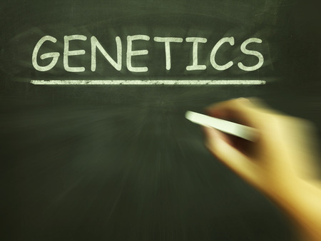 heredity: Genetics Chalk Meaning Genes DNA And Heredity Stock Photo