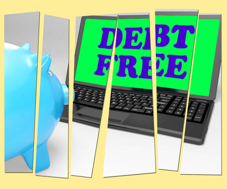 Debt Free Piggy Bank Showing No Debts And Financial Freedom photo