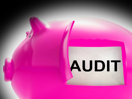 auditors: Audit Piggy Bank Message Meaning Inspection And Validation Stock Photo