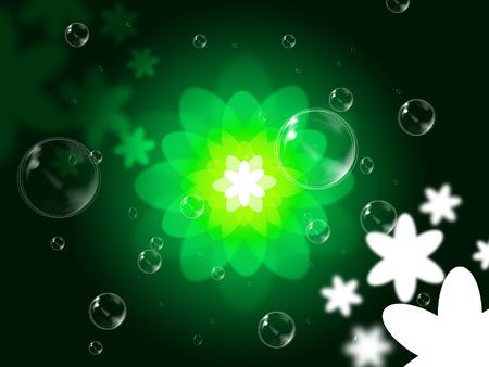 light burst: Nature Floral Zeige Light Burst und Blume