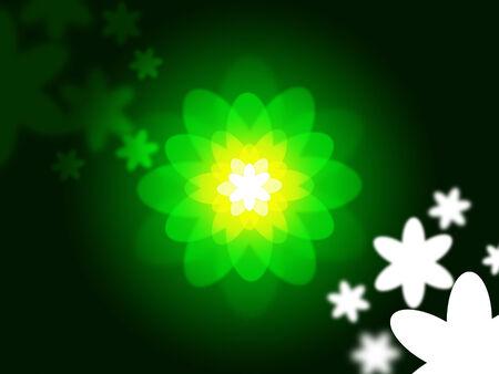 light burst: Glow Blumen Anzeige Light Burst und Land