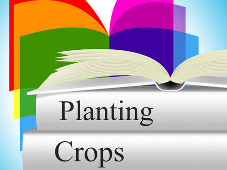 agribusiness: Planting Crops Meaning Agribusiness Agriculture And Farming