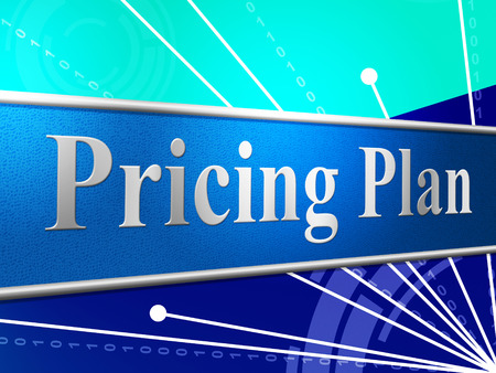 Pricing Plan Meaning Programme Scheme And Procedure