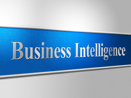 smartness: Business Intelligence Representing Intellectual Capacity And Biz