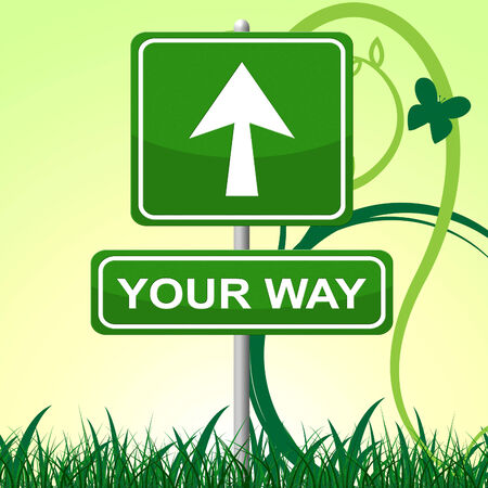 Your Way Showing Display Confusion And Choice photo