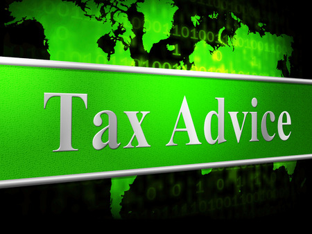 taxpayer: Tax Advice Representing Taxpayer Helped And Counselling