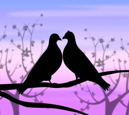 with fondness: Love Birds Meaning Compassionate Romance And Fondness