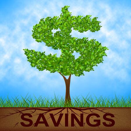 reforestation: Savings Tree Indicating American Dollars And Reforestation