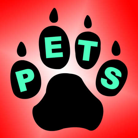 domestic animals: Pets Paw Indicating Domestic Animals And Creature