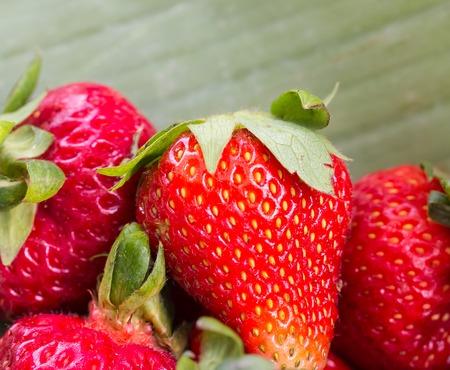 healthful: Fresas frescas Mostrando productos org�nicos y saludables