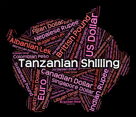 foreign currency: Tanzanian Shilling Representing Foreign Currency And Text