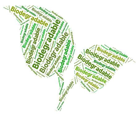 decomposed: Biodegradable Palabra Mostrando Palabras texto y se descompone