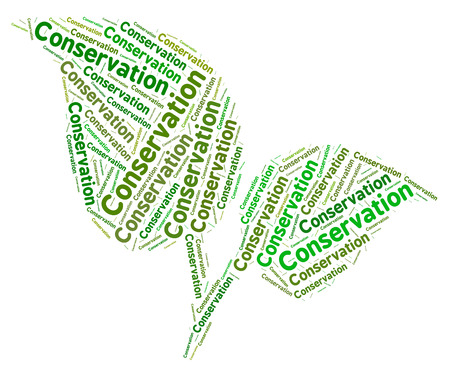 conserving: Conservation Word Showing Go Green And Conserving