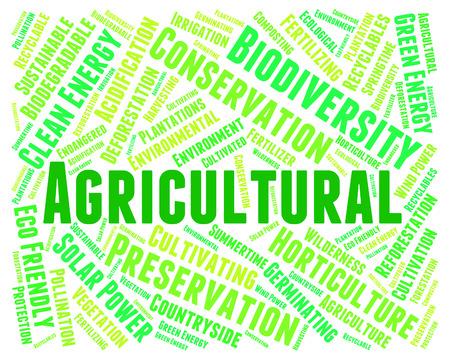 farmstead: Agricultural Word Showing Farmstead Farmland And Cultivation