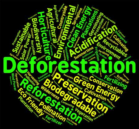 deforested: Deforestation Word Indicating Clear Deforesting And Deforests