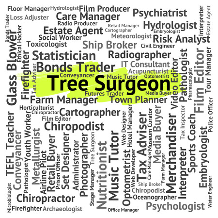 general practitioner: Tree Surgeon Representing General Practitioner And Career