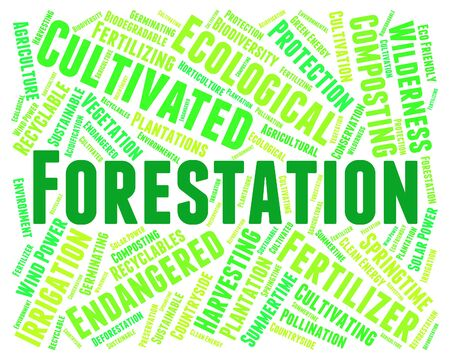 copse: Forestation Word Showing Copice Copse And Trees
