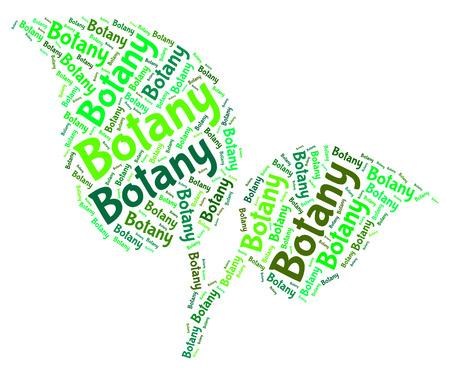 educated: Botany Word Indicating Plant Life And Educated Stock Photo