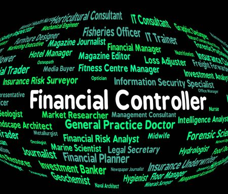 financial controller: Financial Controller Representing Job Ceo And Investment