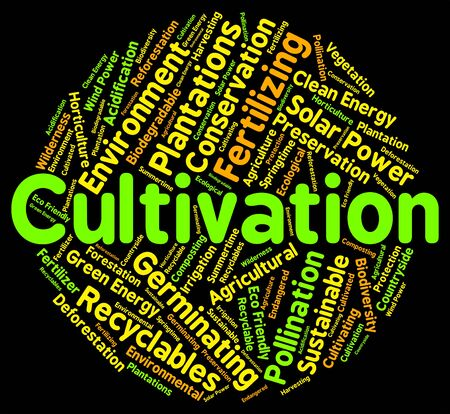 sows: Cultivation Word Meaning Sows Cultivates And Sowing Stock Photo