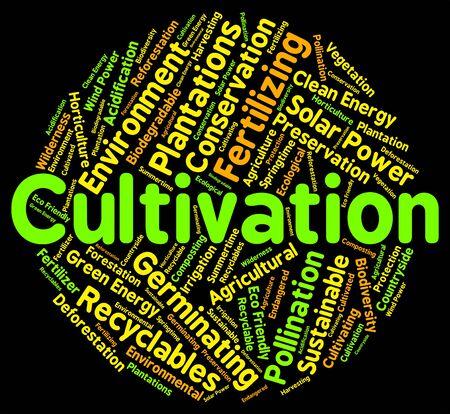 siembra: Palabra Cultivo Significado Cerdas cultiva y siembra Foto de archivo