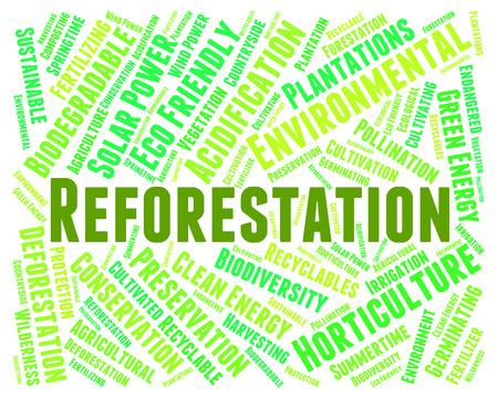 reforestation: Reforestation Word Representing Woodland Woodlands And Jungle