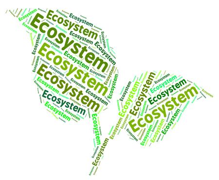 ecosistema: Ecosistema Palabra Representando Día de la Tierra y la biosfera