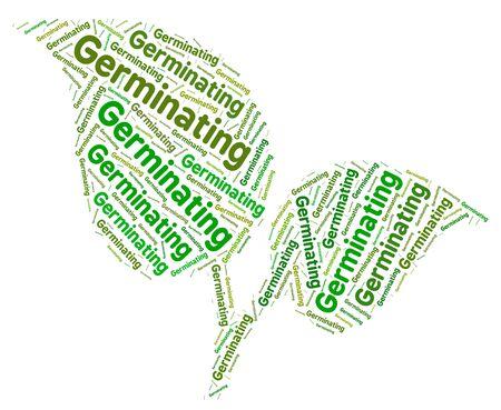 germinación: Indicando que germina Palabra germinación cultivar y agricultura