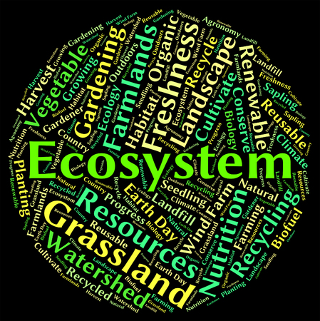 ecosystems: Ecosystem word showing eco biosystem and ecology