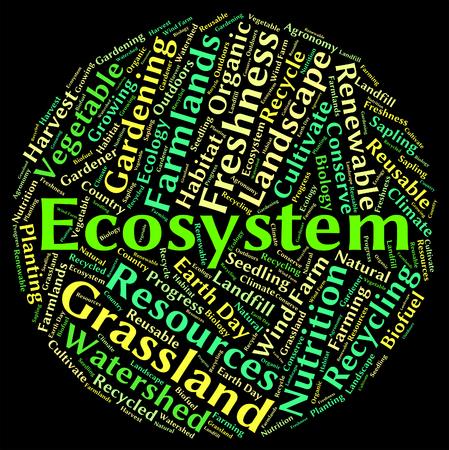 ekosistem: Eko biyosistemi ve ekoloji gösteren Ekosistem kelime
