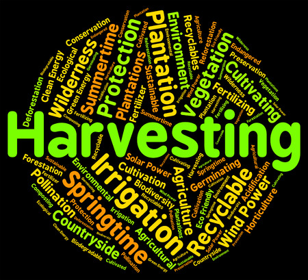 yields: Harvesting Word Showing Produce Gathering And Gather