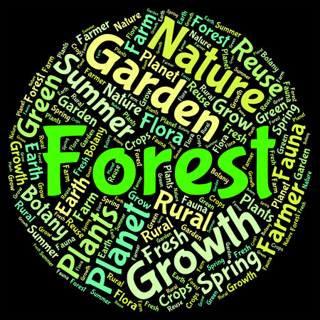 forested: Forest Word Showing Words Forested And Jungle