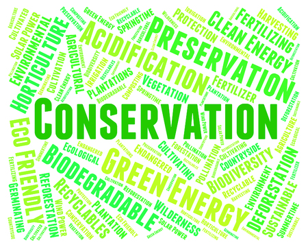 earth friendly: Conservation Word Representing Earth Friendly And Conserving