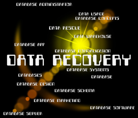 data recovery: Data Recovery Indicating Getting Back And Retrieve