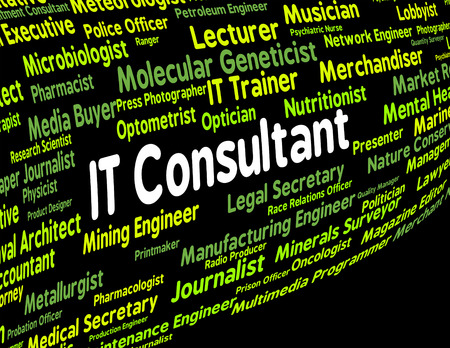 information technology: Information Technology Consultant Indicating Text Guide And Digital