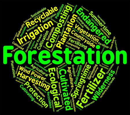 forestation: Forestation Word Indicating Text Trees And Park Stock Photo