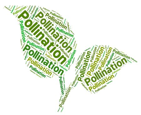 pollination: Pollination Word Representing Breeding Fertilization And Pollinating