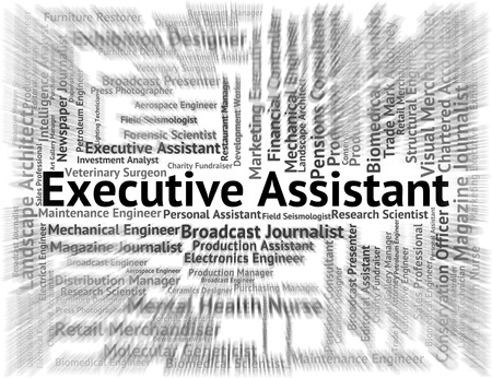 executive assistants: Executive Assistant Indicating Director General And Job