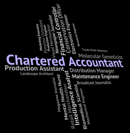 chartered accountant: Chartered Accountant Indicating Balancing The Books And Book Keeper
