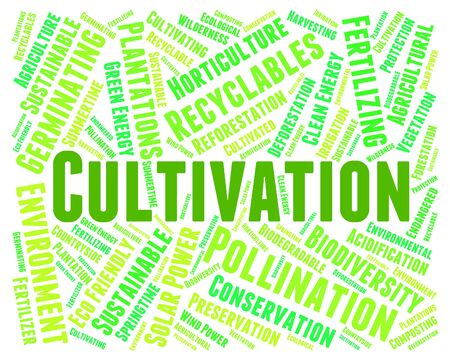 sow: Cultivation Word Representing Cultivates Growing And Sow