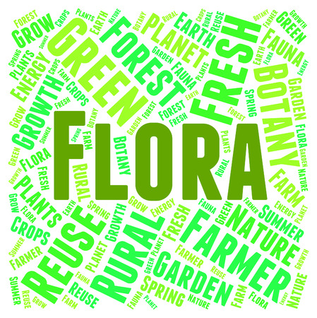 herbage: Flora Word Meaning Plant Life And Verdure Stock Photo